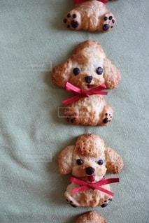お犬クッキーの写真・画像素材[3195882]