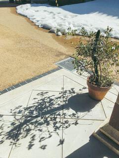 春の訪れを待つ草木と冬の終わりを告げる溶け残りの雪の写真・画像素材[4161355]