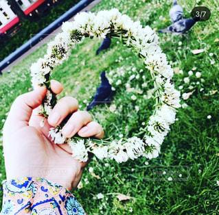 花を持っている人の写真・画像素材[3141682]