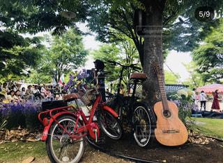 道路の脇に駐車している自転車の写真・画像素材[3141685]