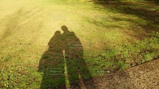 影で萌の写真・画像素材[3252001]