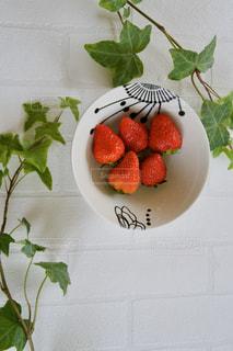 イチゴの写真・画像素材[3219901]
