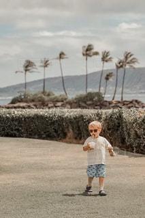 ヤシの木と男の子の写真・画像素材[3150024]