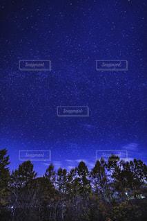 星空と木々の写真・画像素材[3439767]