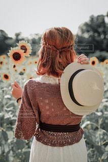 ひまわり畑と女性の写真・画像素材[3548754]