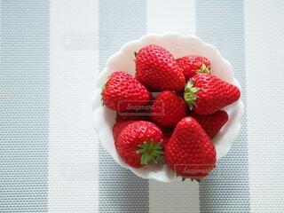 イチゴをどうぞの写真・画像素材[4606924]