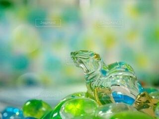 ガラスのオットセイ海へ(1)の写真・画像素材[4690202]