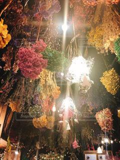 カフェ,花,カラフル,ドライフラワー,照明,天井,インスタ映え