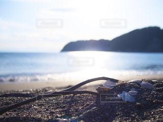 海岸の写真・画像素材[3209511]