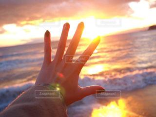 夕日を...の写真・画像素材[3209502]