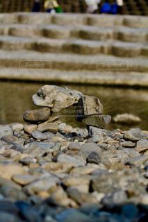自然,綺麗,川,河原,石,川遊び,石積み,浅川
