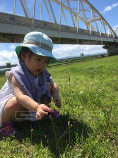 草の中に立っている小さな女の子の写真・画像素材[3154685]