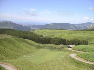 自然,草原,山,草,樹木,高原