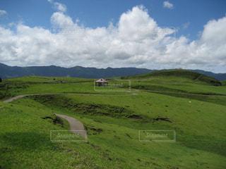 風景,空,緑,草原,牧場,景色,草,高原