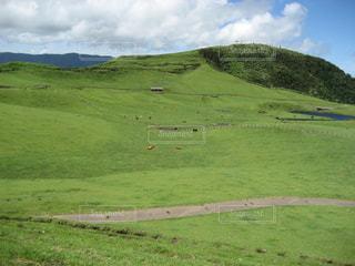 自然,空,草原,牧場,景色,草,大地,高原