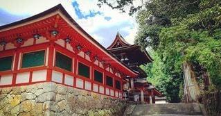 空,建物,屋外,神社,赤,樹木,石
