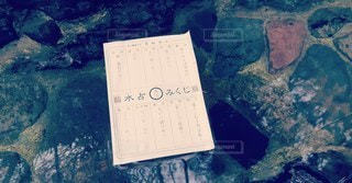 京都,神社,貴船神社,おみくじ,古都,大吉,テキスト,水占みくじ