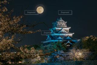 夜景,城,月,広島,広島城