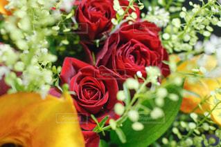 花,花束,バラ,プレゼント,カラー,ナズナ,ルスカス,タラスピ
