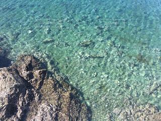 自然,海,岩場,透明,海辺,磯,浅瀬