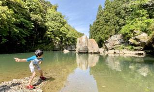 緑の水面に1の写真・画像素材[3174320]