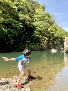 水緑の水面に2の写真・画像素材[3174321]