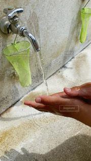 手洗い8の写真・画像素材[3192089]