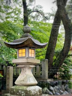 灯のついた石灯籠の写真・画像素材[3205461]