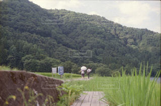空,夏,屋外,晴れ,田舎,山,景色,草,樹木,新緑,フィルム,草木,お出掛け,山腹