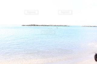 海の写真・画像素材[198728]