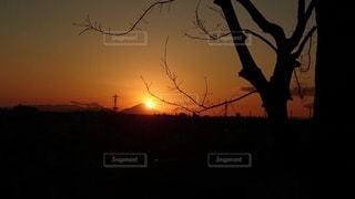 自然,風景,空,富士山,屋外,太陽,夕焼け,夕暮れ,シルエット,オレンジ,樹木,癒し,祈り,遠距離,明るい,草木,願い,師走