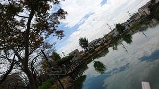空,秋,屋外,湖,水面,池,反射,鏡,樹木,癒し,草木,針葉樹