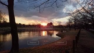 夕暮れ時の公園の写真・画像素材[3416043]