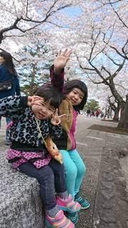 桜,屋外,笑顔,子供たち