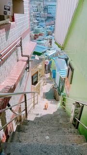 猫,風景,階段,田舎,景色,裏路地,路地裏,景観