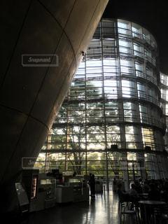 建物,屋内,木,夕暮れ,窓,影,木漏れ日,光,美術館,建築,シャドー,コントラスト,ライティング,カーブ,アーキテクチャ,新国立美術館