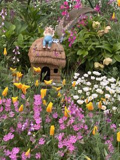 花,庭,屋外,ガーデニング,癒し,土,装飾,昼下がり,趣味,草木,オーナメント,ガーデン