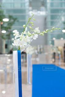 空,花,結婚式,鮮やか,結婚,バージンロード,ウェディング,誓いの言葉,空港ウェディング