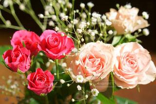 花の写真・画像素材[473439]