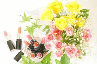 花の写真・画像素材[541515]