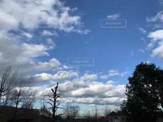 風景,空,屋外,雲,景色