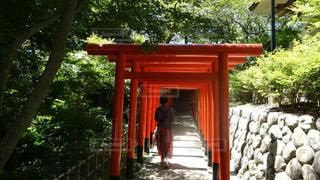 神社,後ろ姿,鳥居,法多山
