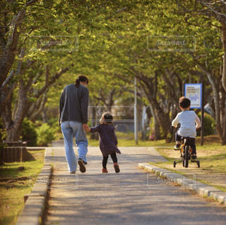 新緑の公園を散歩する親子の写真・画像素材[3182801]