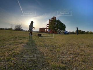 犬,風景,空,公園,屋外,夕焼け,夕暮れ,散歩,幻想的,景色,影,女の子,草,丘,人,遊び場,インスタ映え