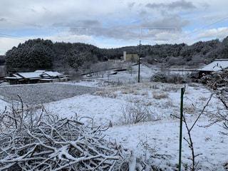 自然,風景,冬,雪,屋外,田舎,山,樹木,氷点下,日中,2月