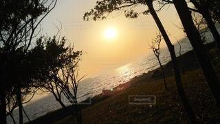自然,海,空,木,屋外,太陽,ビーチ,夕焼け,夕暮れ,水面,海岸,水平線,樹木,草木