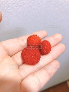 もこもこ野苺の写真・画像素材[3207704]