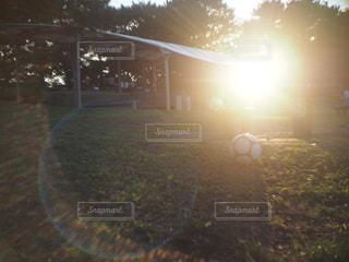 カメラ女子,屋外,太陽,夕暮れ,草,樹木,サッカーボール,キャンプ場,フレア,フォトジェニック