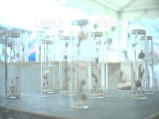 カメラ女子,青,花瓶,ドライフラワー,ガラス,フォトジェニック,インスタ映え