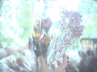 花,カメラ女子,ドライフラワー,flower,オールドレンズ,草木,フォトジェニック,インスタ映え
